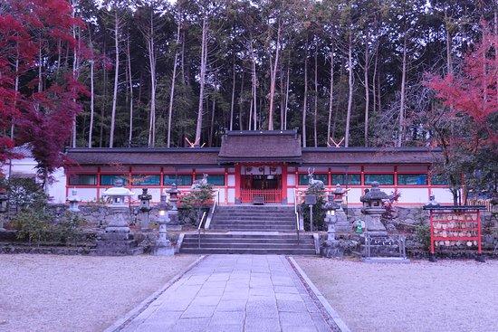 中門です。この奥に本殿である4つの社があります。屋根の上の千木がちらっと見えてますね。