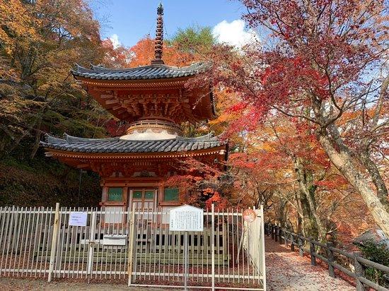 Daiitokuji Temple