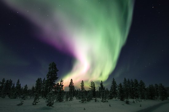 Ivalo Trek Lapland