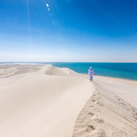 I'm in Qatar! I flew LA to Doha non-stop on Qatar Airways and am spending a few days checking out fun things to do around the country. Today was all about camels and dune bashing. This was during a quick stop near the Saudi Arabian border. So gorgeous!