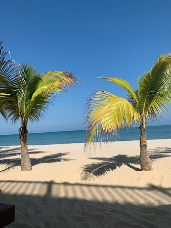 The Best Boutique Hotel In Placencia!