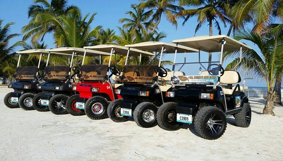 Mr. Rental's Golf Carts