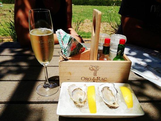 Piketberg, แอฟริกาใต้: Oysters and MCC