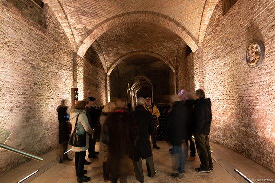 Cantine Bosca - Cattedrali Sotterranee: Un gruppo durante la visita