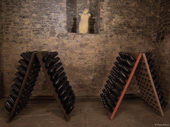 Cantine Bosca - Cattedrali Sotterranee: Durante la visita