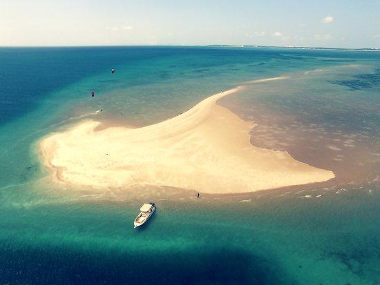 Wild Africa Ocean Safaris