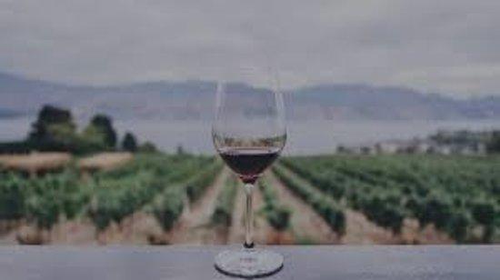 Sonoma , Napa, Mendocino, Healdsburg, Russian River Wine Touring