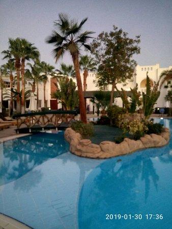 Отель с лучшей территорией