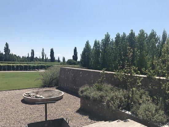 Bodega Zuccardi Valle de Uco: El patio
