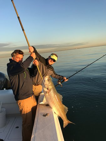 """Near coastal fishing out of Jones Inlet is world class. In fact, it's why Freeport is nicknamed """"The Fishing Capital of the South Shore"""". On the Near Coast Charter, we'll take you fishing from South Jersey to Montauk Point with the goal of finding you the greatest catch. We'll head out about 3 nautical miles in our search for bass, bluefish, fluke, and weakfish. The fishing methods we will use vary depending on the bite, meaning we'll troll, use live line baits, or use topwater baits."""