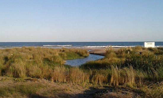 Reserva Natural del Puerto