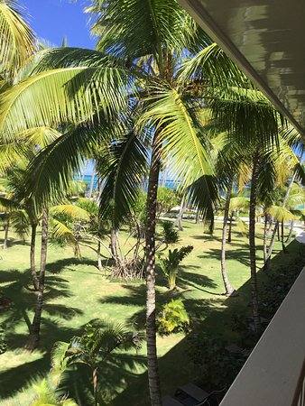 Chez Gourmet: Tropical Punta Cana... perfect vacation destination!