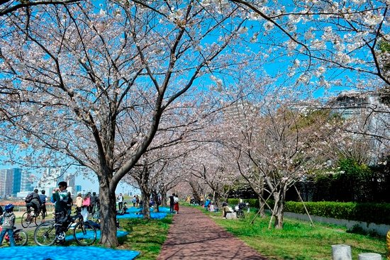 Tamagawa Gas Bridge Green Space