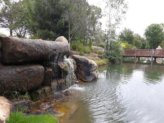 Armidale Bicentennial Arboretum