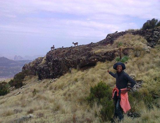 Дебарк, Эфиопия: getlstd_property_photo