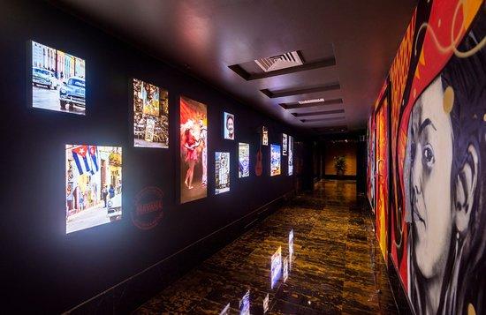 La Vista 55: Interiors
