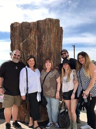Elijah Mountain Gem Mine: Tucson Gem Show 2019