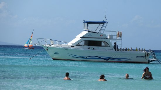 The dive boat returning after an excursion.
