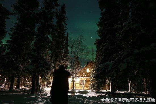 Bear in the North / Medvezhiy Ugol