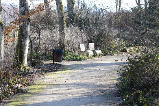 Parc de la Creuzotte: Une vue intérieure de ce parc