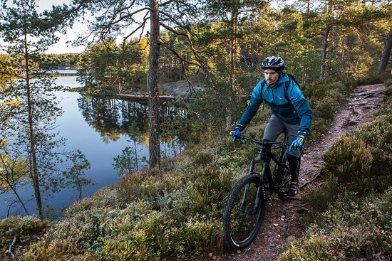 Some trails are suitable also for biking in Teijo National Park.