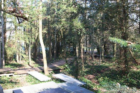 Une vue intérieure de ce parc