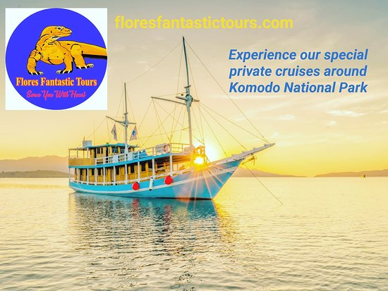 Clean and comfortable sailing boat around Komodo National Park.  www.floresfantastictours.com