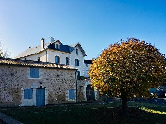 Saint-Florent-le-Vieil, France : La Maison Julien Gracq, vue du jardin du marronnier.