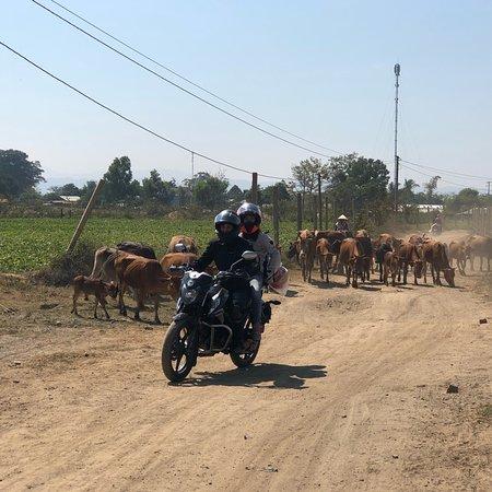 Dalat Easy Rider Group