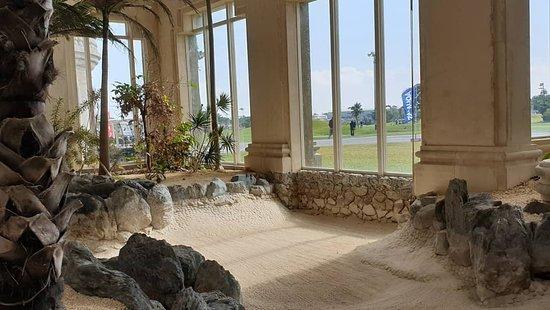 Palm Hills Golf Resort Club