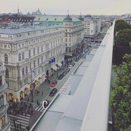 Вот такой прекрасный вид открывается на Вену из королевского номера отеля Захер.