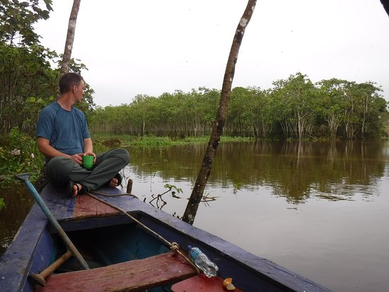 4-Day Amazon Wildlife Adventure in Pacaya-Samiria Reserve from Iquitos, Peru: Early morning bird watching.