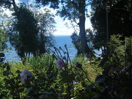 Cabanas El Roble Lican Ray: Vista del lago, desde la península.