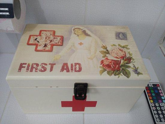 Аптечка с основным набором лекарств, набором иголок с нитками и влажными салфетками.