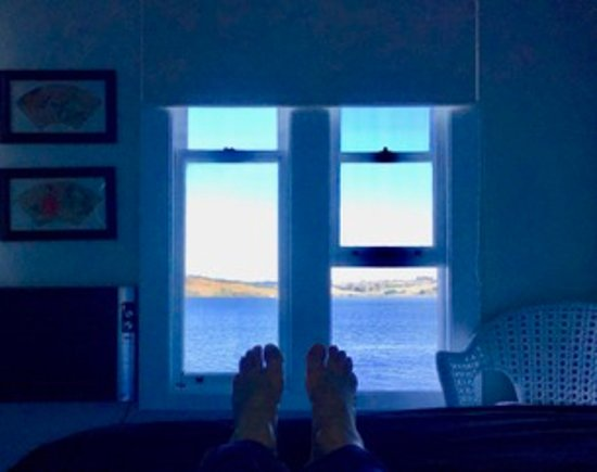 Mangonui Waterfront Apartments: Lovely view from the bed.