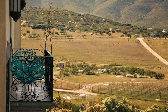 Vena Cava wines.  - Picture of La Villa del Valle, Valle de Guadalupe - Tripadvisor