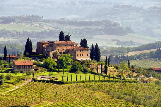 Chianti Half-Day Wine Tour from...