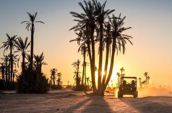 Marrakech Desert and Palm Grove Buggy...