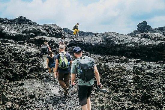 Excursão a Pé no Vulcão Sierra Negra...