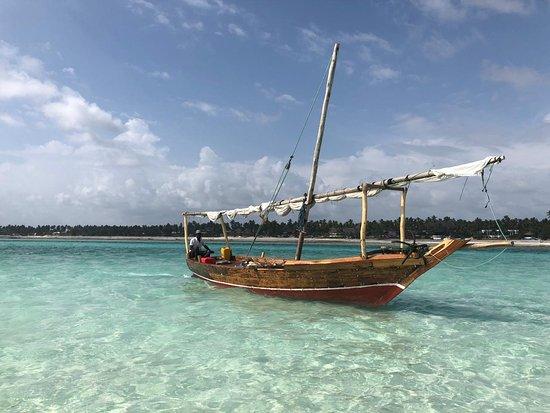 Zanzibar Bliss