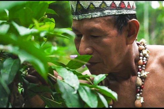 Communauté autochtone à Iquitos