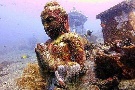 Discover Scuba Diving Tulamben...
