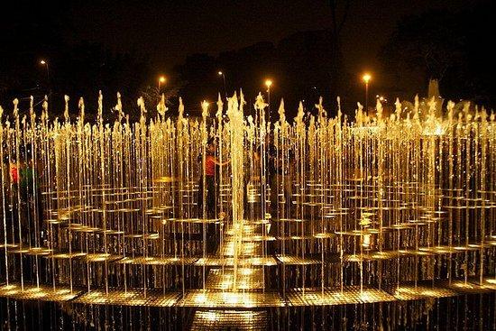 Lys, Pisco & Fun: Night city tour...