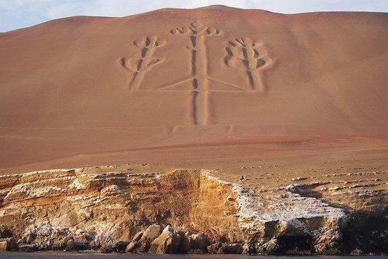 Fra Lima: Ballestas, Nazca Lines...
