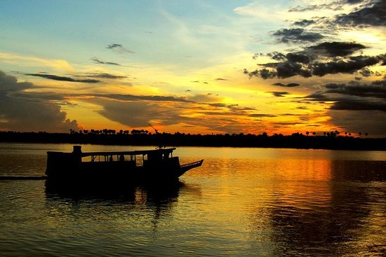 River by Night: Jungle Night tour