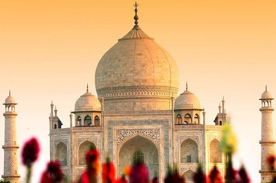 Full Day Private Day tour to Agra from Delhi with lunch