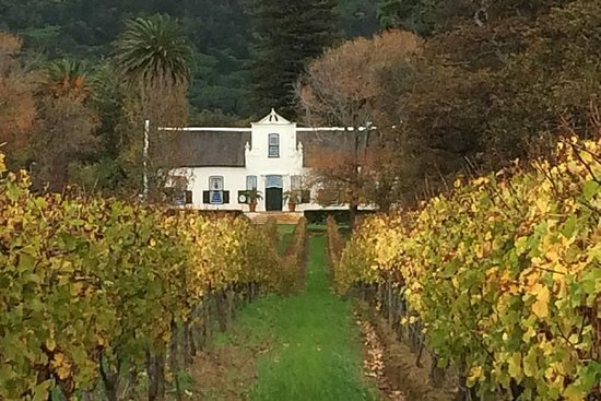 Historisk Constantia Winelands Tour