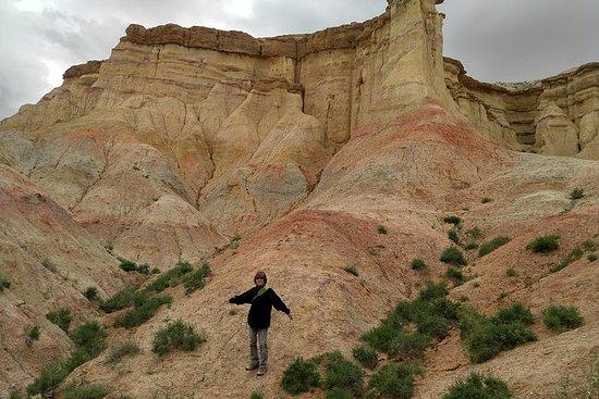 Gobi & Sentral Mongolia tour