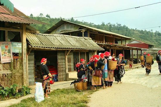 Sa Pa 2-Day Easy Trek and Homestay...