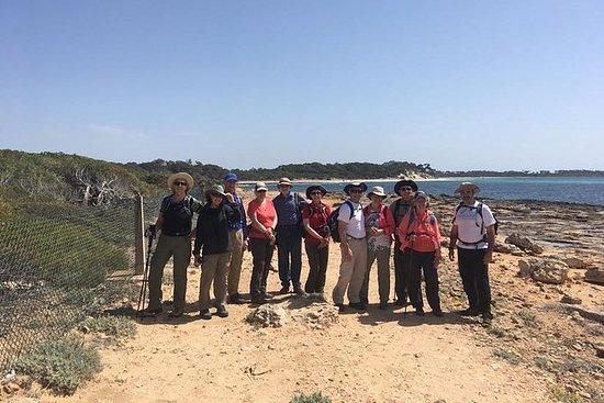 Tour familiar de caminata en Mallorca